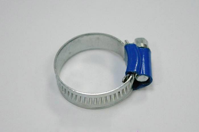 英式蓝头喉箍
